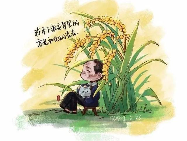 今天,我给袁隆平爷爷献上了50支水稻,作为送别